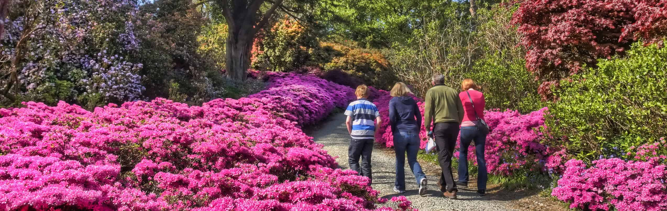 Mount Congreve Guided Tours