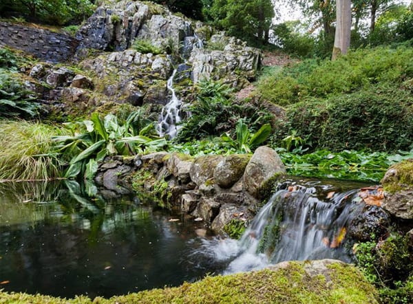 Woodland Garden - Rock Waterfall