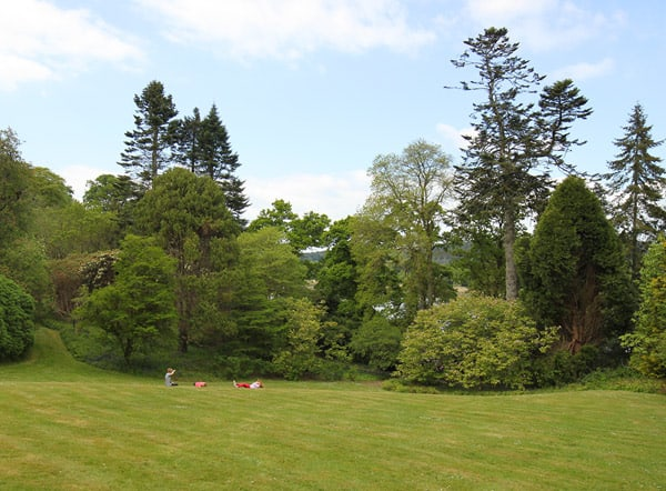 Mount Congreve Gardens west lawn